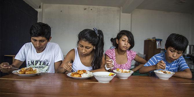 Las razones de la reducción de la desnutrición crónica en el Perú*